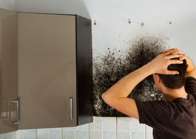 How to Deal with Mold on Your Rental Property