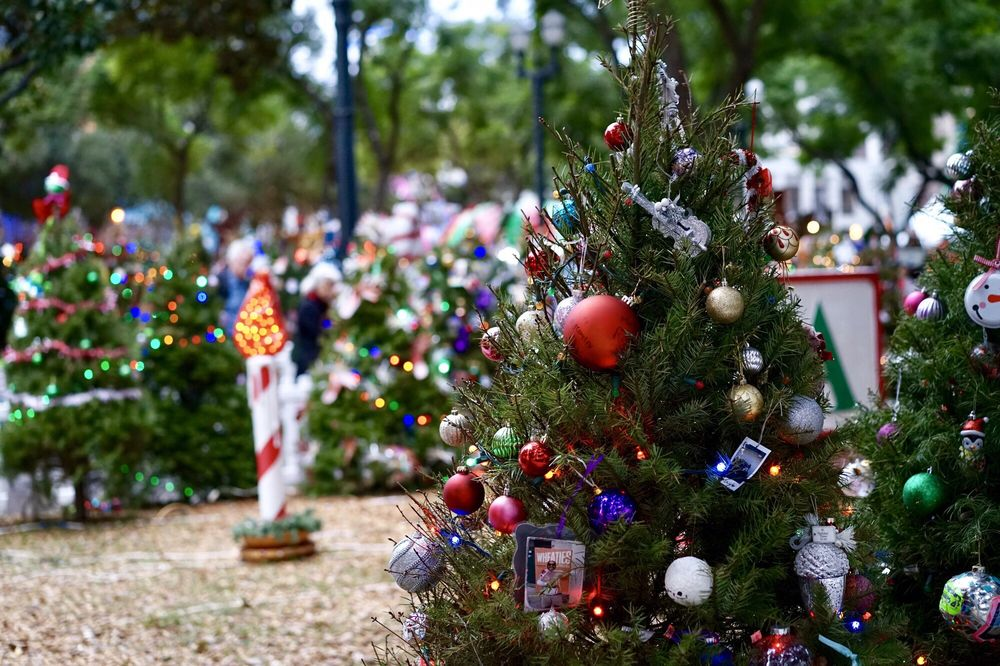 san jose christmas in the park breaks guinness world record