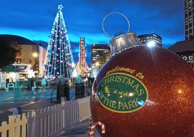 San Jose Christmas In The Park Breaks Guinness World Record with 600 Christmas Trees